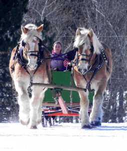 Sleigh Rides on Northern Wisconsin Vacations