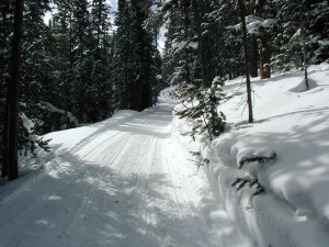 Northwoods Snowmobile Trails