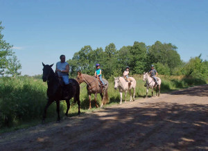 Northern Wisconsin Horseback Riding