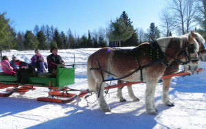 Sleigh Rides in Northern Wisconsin