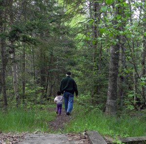 Hiking Trails in Vilas County, Wisconsin