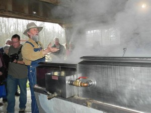 Guided Sugar Bush Tours in Phelps
