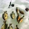 Ice Fishing in Phelps WI