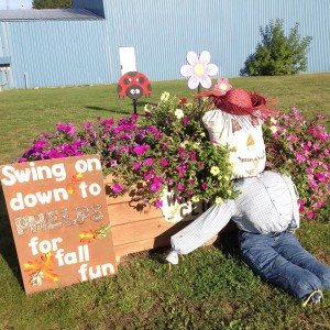Fall Festival in Vilas County