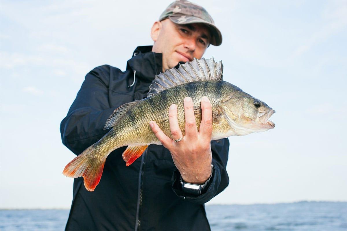 Fishing season is underway in vilas county wisconsin for Fishing season wisconsin