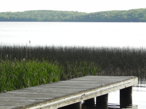 Enjoy the serenity of nature on one of many lakes in Phelps this spring!