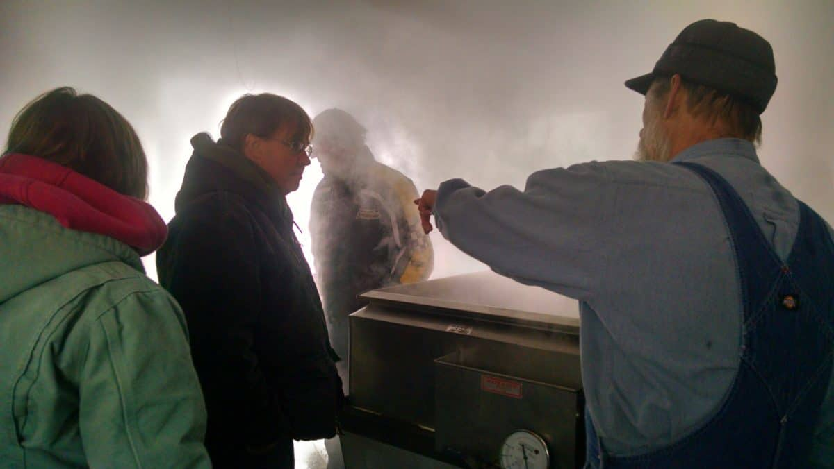 7th Annual Phelps Maple Syrup Fest This Saturday
