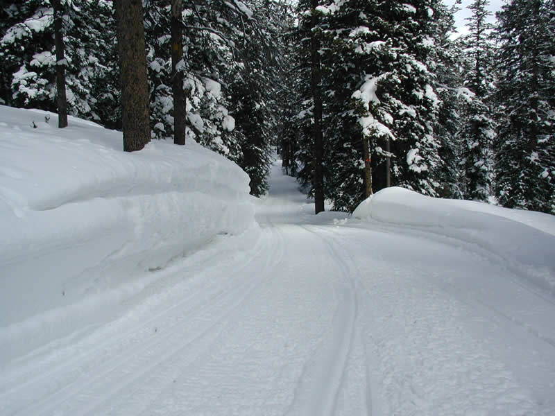 Snowmobile Trails in Vilas County